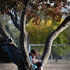 John Cross<br /> A tree at Land of Memories Park provided a comfortable seat for Madeline Halvorson of Mankato as she read a book.