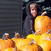 Pat Christman<br /> Jack Bentley, 12, hoists a pumpkin while looking for a good one Wednesday in Mankato.
