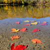 Fall foliage is reflected in on the becalmed surface of Hiniker Pond on Wednesday. Unseasonably warm weather is forecast for the next several days with a cool down into the 50s on Saturday and Sunday, just in time for the Mankato Marathon. Photo by John Cross