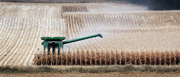 A farmer guides his combine through a field northwest of Lake Washington.