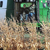 "Sen. Al Franken drives a combine at the rural Vernon Center farm of Kevin and Julie Paap. The farmer harvested most of his corn last week, but saved five acres for the senator, calling it the ""Franken 5."" Franken said jokingly that he worried farmers would come to apply this nickname to their worst area of crops."