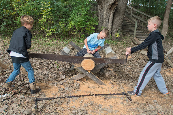 Peter Jamison (center), 10, inspects the saw work of Rocky Forster (left), 9, and Ian Jamison, 8, as they sawed a log at History Festival on Wednesday. Photo by Jackson Forderer