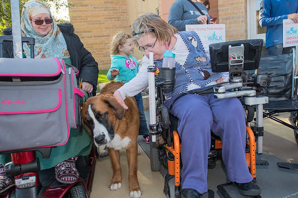 Julie Fales (right) pets Khadijah Fitzgerald's dog Willa at the end of the SMILES Wheelchair awareness event on Friday. Photo by Jackson Forderer