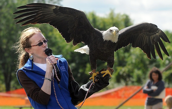 Pat Christman <br /> The National Eagle Center's Jennifer Drayna holds up Was'aka, a bald eagle housed at the center during Friday's education day.