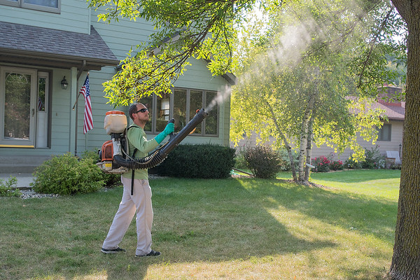 "Jason Quint of Mosquito Squad sprays under a tree for mosquitoes at a residence in North Mankato on Thursday. Quint said, ""The rain in August and the hot temperatures has combined to make a lot more mosquitoes."" Photo by Jackson Forderer"