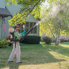 """Jason Quint of Mosquito Squad sprays under a tree for mosquitoes at a residence in North Mankato on Thursday. Quint said, """"The rain in August and the hot temperatures has combined to make a lot more mosquitoes."""" Photo by Jackson Forderer"""
