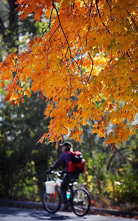 Temperatures in recent days may have been summer-like but the fall color framing a bicyclist as he cruised through Sibley Park is a colorful reminder that it is later than we think.