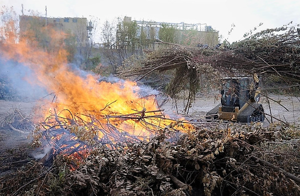 A worker hauls brush cleared from the banks of the Blue Earth River onto a fire. The brush cutting, which is being performed by a private tree service along sections of the the Minnesota and Blue Earth rivers in Mankato during the past several weeks, is being done for to protect flood walls during high water.