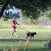 North Mankato dogs in parks 1