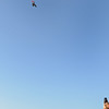 Skydive 0915 1