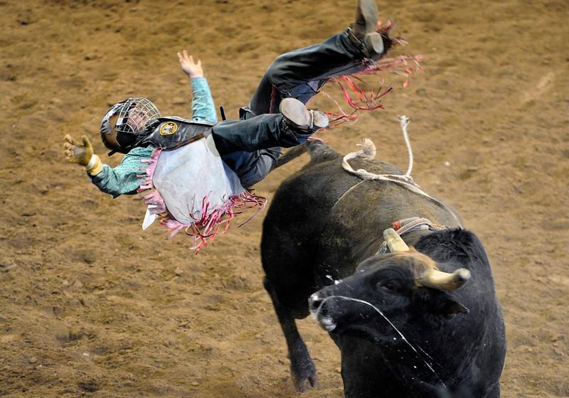 Pro Rodeo