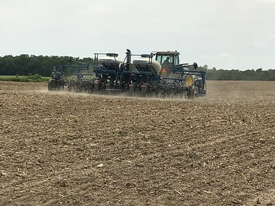 ALYSSA ALFANO / GAZETTE Kyle Reusch drives his planter Wednesday through unplanted fields at Kruggel Farms in Litchfield looking for dry spots to plant soybeans. He maneuvers around puddles and mud to find good planting spots as heavy rain this season has been hard on farmers.