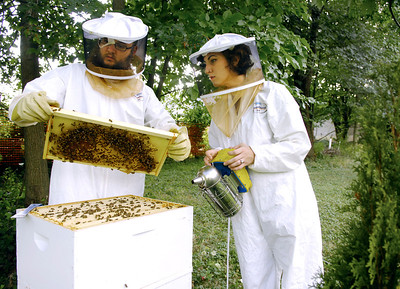 Willoughby Beekeepers 082613