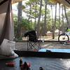 Au camping, sous les pins.