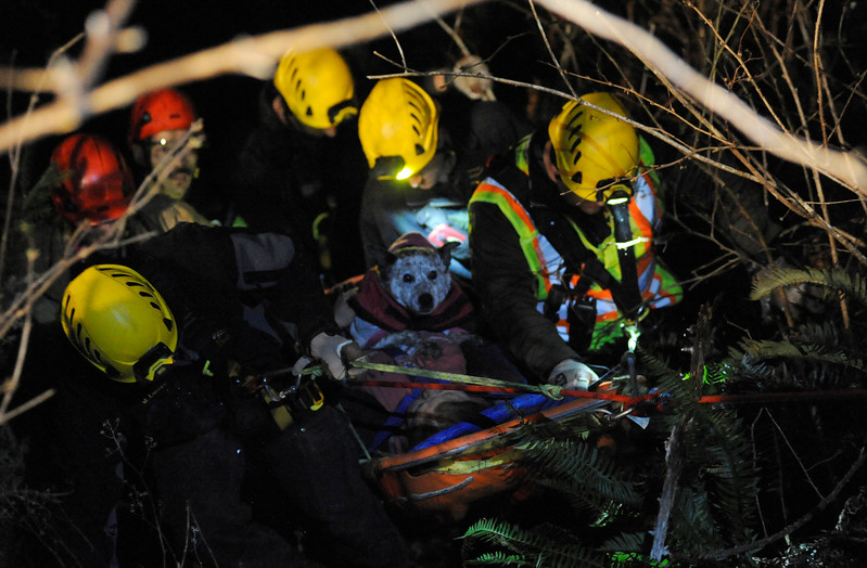 Responders work to rescue a woman who drove off Seven Devils Road and slid 180 feet down an embankment southeast of Charleston, Ore. on Friday, January 6, 2017. She held onto her dog Sophie as responders lifted both of them to the road.