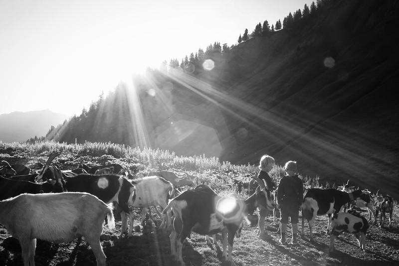 Lever de soleil sur le Drizon