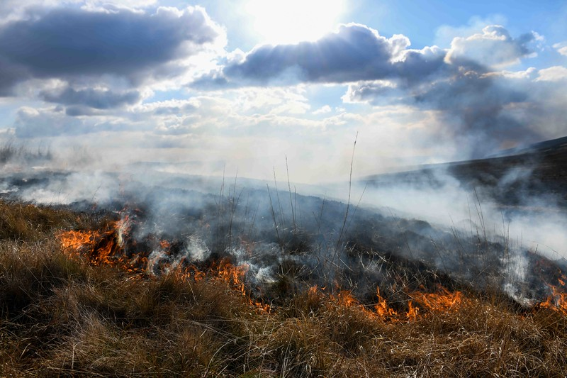 Grass fire across a huge are of land in rural Wales