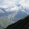Groupe de vautours sur fond d'Aiguille des Glaciers