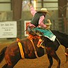 Dripping Springs Fair and Rodeo pics