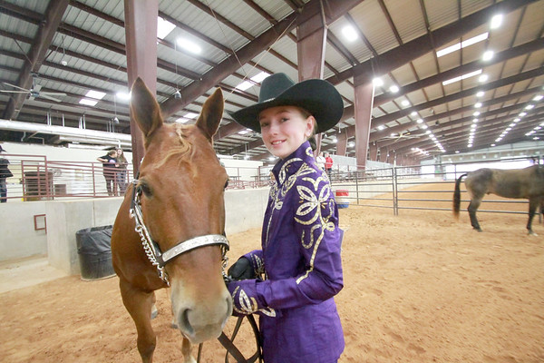 Hays County Livestock and Horse Show 2017