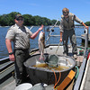Tribune-Star file/Jim Avelis<br /> Lunch: Indiana Department of natural Resources employees conducted a demonstration of electro-shocking fish in the Wabash River TuesdayJune 12 2012. One employee holds a silver, or Asian carp.