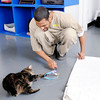 Don Knight | The Herald Bulletin<br /> Lamar Hall plays with Liquorice, one of several cats from the Animal Protection League staying at the Pendleton Correctional Facility while they wait for permanent homes.