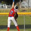 softball county