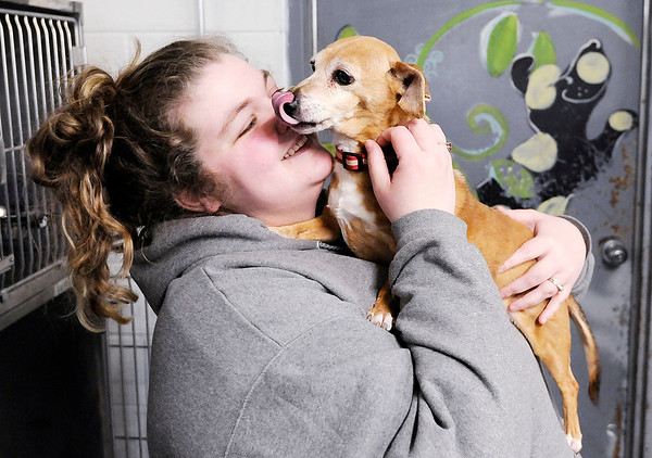 Don Knight | The Herald Bulletin<br /> Madison County Humane Society Shelter Manager Nikki Moore gets a kiss from Lady, a 14-year-old dachshund mix.