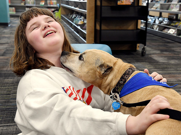 John P. Cleary | The Herald Bulletin <br /> Nola Starr, 10, grins as she leans back as Love on a Leash therapy dog Oliver leans forward to lick her face during the K9 Companions event at the Anderson Public Library's Children's Department Monday evening.<br /> Periodically the library will have volunteers from Love on a Leash bring in their therapy dogs to visit with the patrons of the library.