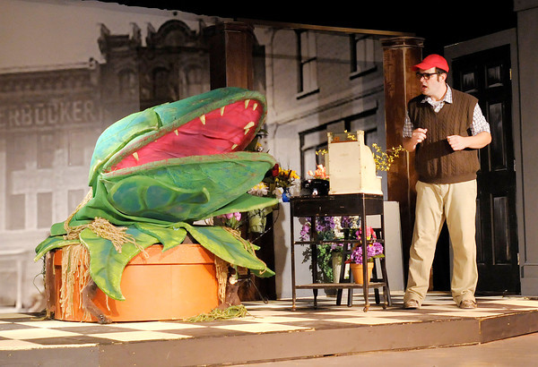 """Audrey II asks Seymour (Tommy Thomas) to feed him during Mainstage's production of the """"Little Shop of Horrors."""""""
