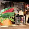 "Audrey II asks Seymour (Tommy Thomas) to feed him during Mainstage's production of the ""Little Shop of Horrors."""