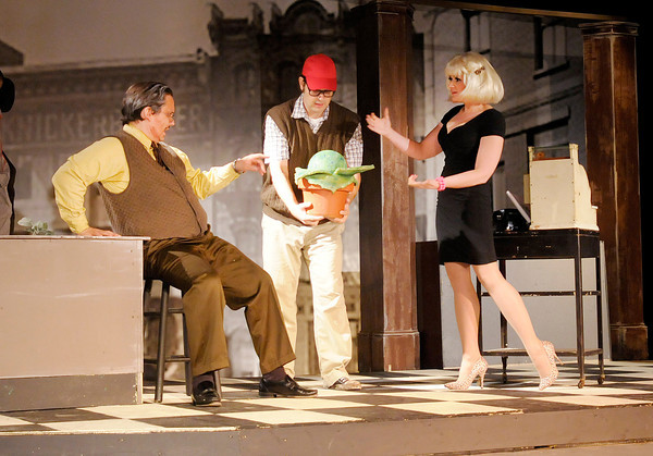 """From right Audrey (Mindy Morton) and Seymour (Tommy Thomas) try to convince Mushnik (Lot Turner) that they should use Seymour's unusual plant Audrey II to bring customers into Mushnik's flower shop in Mainstage's production of the """"Little Shop of Horrors."""""""