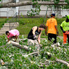 The Crossing students cutting trees for community service.