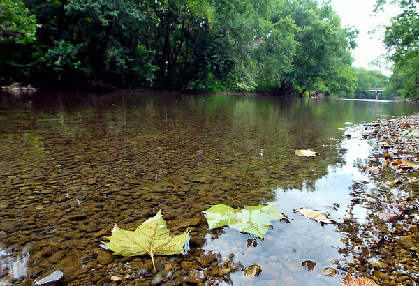 John P. Cleary | The Herald Bulletin<br /> Fallen maple leaves gently float down steam as the rocky bed shows through the clear waters of White River in the Daleville area Monday afternoon. This stretch of the river would be affected by the proposed Mounds Lake Reservoir.