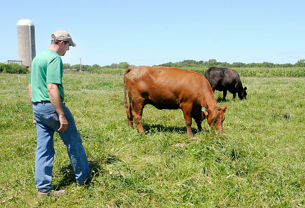 Don Knight   The Herald Bulletin<br /> Brian Shuter of Shuter Sunset Farms Inc. checks on his herd on Wednesday. Beef prices are at an all time high right now.
