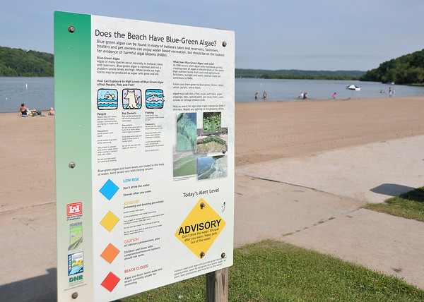 At state-operated beaches in Indiana, officials have posted signs about blue-green algae. The yellow sign at Brookville Lake advised swimmers to not drink the water and shower afterwards. The most serious is a read sign indicating the beach is closed.<br /> <br /> Scott L. Miley / The Herald Bulletin