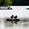 John P. Cleary | The Herald Bulletin<br /> Monday was a good day to spend a lazy afternoon on the waters of Shadyside Lake enjoying the warm sun and the gentle breezes for both man and fowl.