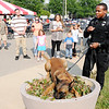 Don Knight | The Herald Bulletin<br /> APD officer Chaz Willis demonstrates his K-9 partner Duke and answers questions during the Madison County Community Health Center's annual Back Yard BBQ on Friday. Next week is National Health Center Week.