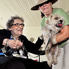 "John P. Cleary | The Herald Bulletin<br /> Nancy Fuller, right, with the Madison County Humane Society, holds Oscar down so Bethany Pointe resident Helen Voight can pet him during ""Doggy's Day Out"" at Bethany Pointe Monday to celebrate National Dog Day."