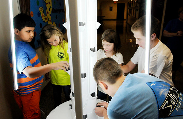 Don Knight | The Herald Bulletin<br /> Clockwise from left, Antonio Robles, Miley Sylvia, Bella Crouse, Riddick Allison and Logan Parker install planting cups in a Tower Garden at Liberty Christian on Tuesday.