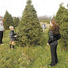 Jayson Parker and his children, from left, Truitt, Tynan and Tatum choose their Christmas tree at Piney Acres in Fortville on Saturday December 1, 2012. Parker, from Indianapolis, learned about Piney Acres from their website.