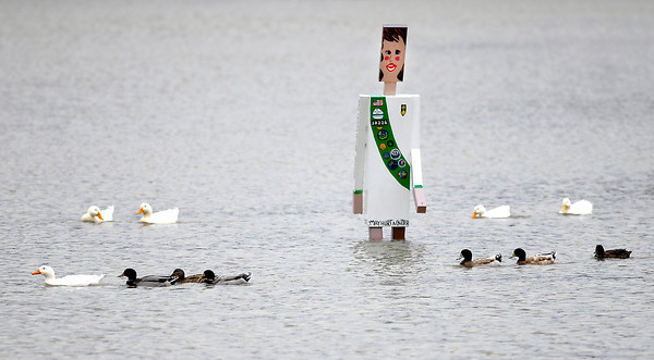 """THB photo/John P. Cleary<br /> After heavy rains hit the area over the weekend this Girl Scout """"walking man"""" did not think they would be wading in Shadyside Lake with the ducks in December."""