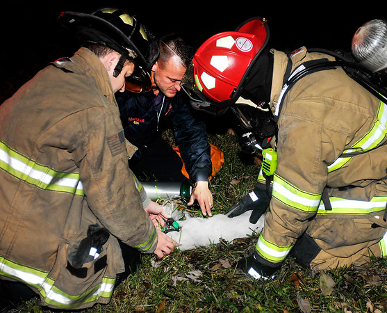 John P. Cleary |  The Herald Bulletin<br /> Anderson firefighters work on this cat after it was rescued from a house fire in the 3700 block of St. Charles Street Tuesday night. Several cats and a dog were rescued from the fire according to the firemen on the scene.