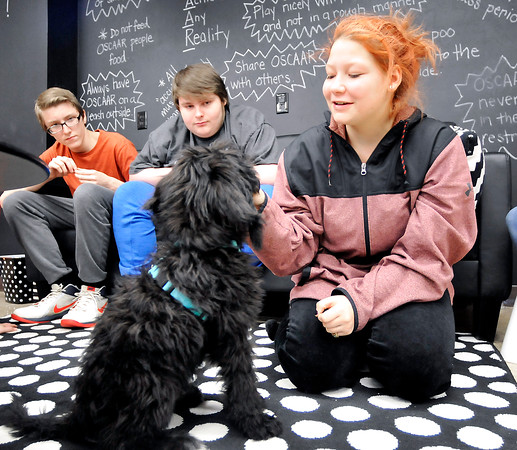 John P. Cleary |  The Herald Bulletin<br /> COMPASS program student Ja'Lyn Simms, right, gives Oscaar a treat as fellow students Drake Runyan and Brent Johnston look on.
