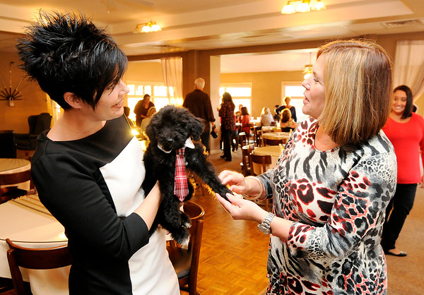 Don Knight | The Herald Bulletin<br /> Director of the Anderson Education Foundation Kay Bale talks with Kristal McCorkle about therapy puppy OSCAAR (Our Students Can Achieve Any Reality), a Bernedoodle, at the Anderson Education Foundation Grant Celebration at the Grandview Clubhouse in November. OSCAAR is a therapy dog for students in Anderson's Compass program made possible through a grant from the Anderson Education Foundation.