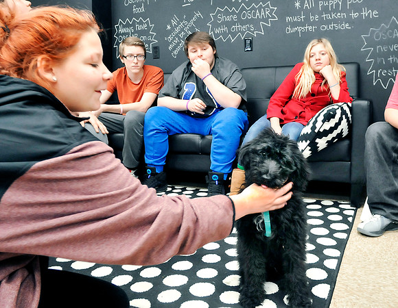 John P. Cleary    The Herald Bulletin<br /> COMPASS program student Ja'Lyn Simms, left, plays with Oscaar as fellow students Drake Runyan, Brent Johnston and Brianna Decker watch and wait their turn to interact with the the program's new therapy dog.