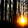 Don Knight | The Herald Bulletin<br /> The sun sets at Mounds State Park on Tuesday. You can watch the sun rise from inside the Great Mound on the winter solstice this Friday. Meet at the Nature Center at 7:30 a.m. for the short hike to the mound and warm beverages will be provided back at the Nature Center afterwards.
