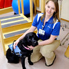 Don Knight / The Herald Bulletin<br /> Brittney Millspaugh Storms, DPT, and service dog Denny work together at St. Vincent Anderson Regional Hospital.