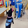 Don Knight / The Herald Bulletin<br /> Brittney Millspaugh Storms, DPT, and service dog Denny work with Linda Parks at St. Vincent Anderson Regional Hospital on her physical therapy.