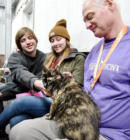 John P. Cleary   The Herald Bulletin<br /> Brandon Hiday and Hailey Hamby check out Kylie as volunteer Steve Duncan assists them in finding a cat to adopt during the Animal Protection League's Meow-A-Thon Saturday at Harrah's Hoosier Park Racing and Casino.